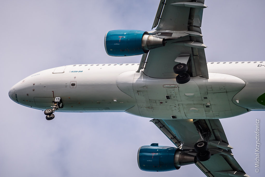 Aer Linugs A320-200